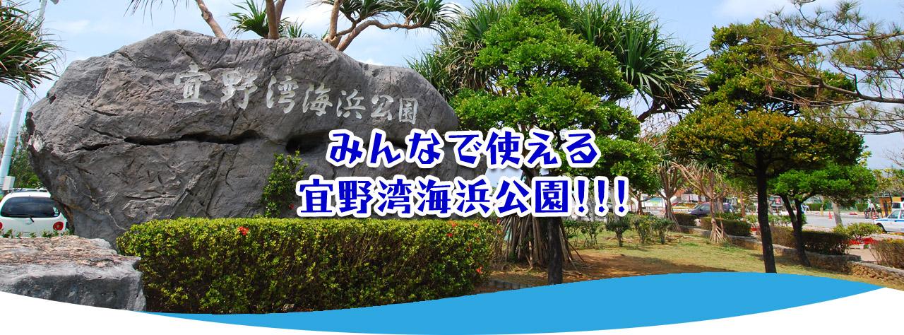 宜野湾海浜公園庭球場|施設のご案内