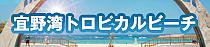 toropi_banner